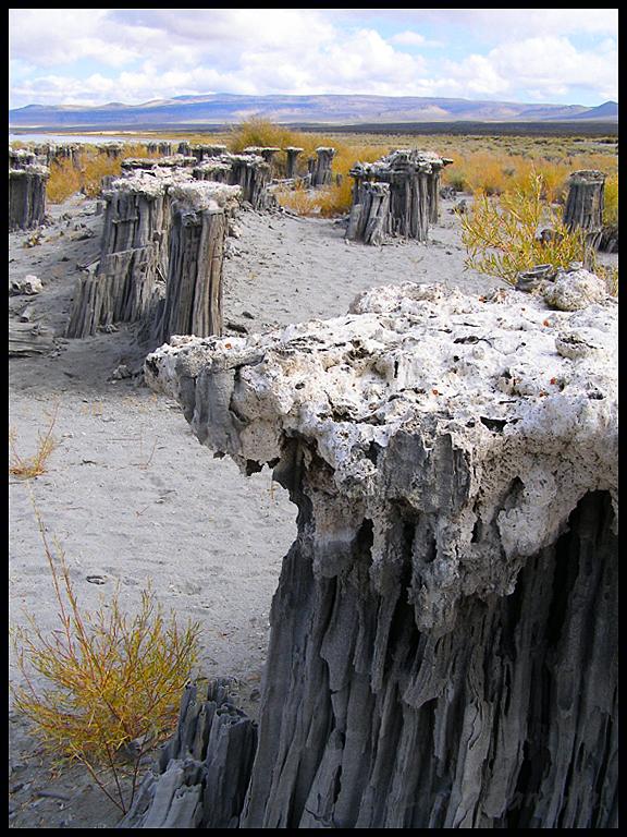 Sandcasals Mono Lake
