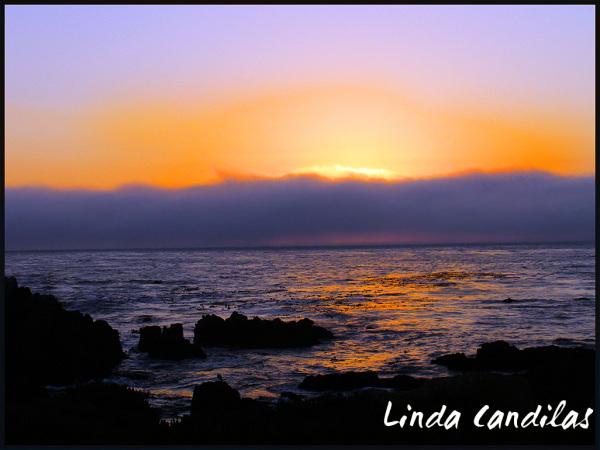 Monterey Rocky Shore Sunset