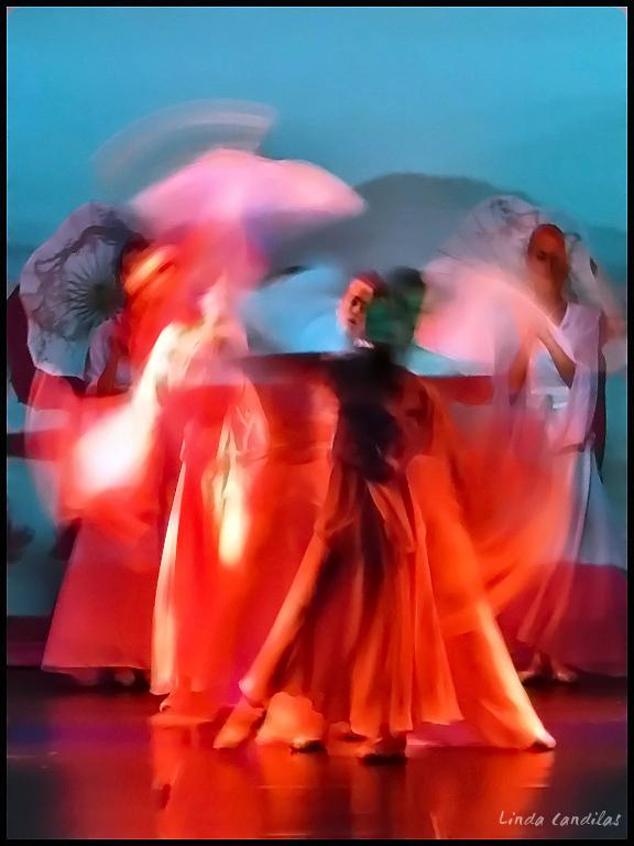 Florida Ballet in Motion