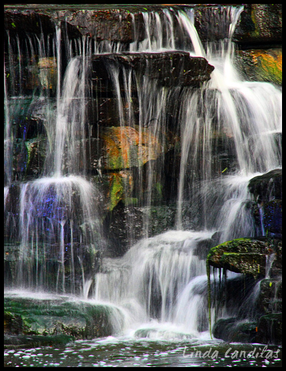 Florida Waterfall