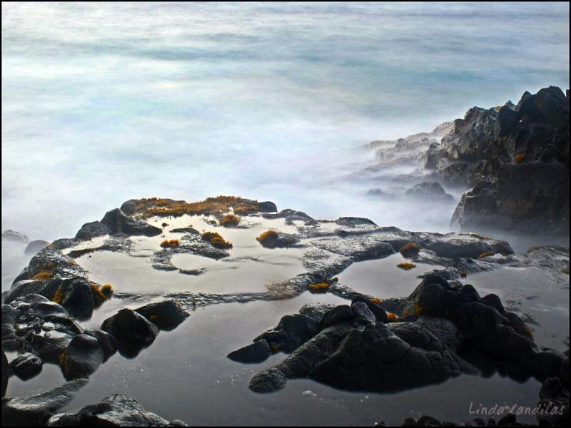 Hawaii Rocky Coast
