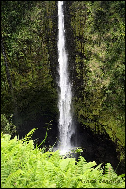 Akaka Waterfall, Hawaii