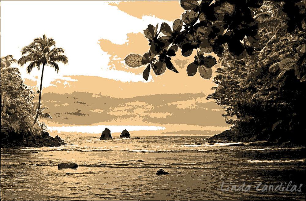Hawaii Tropical View