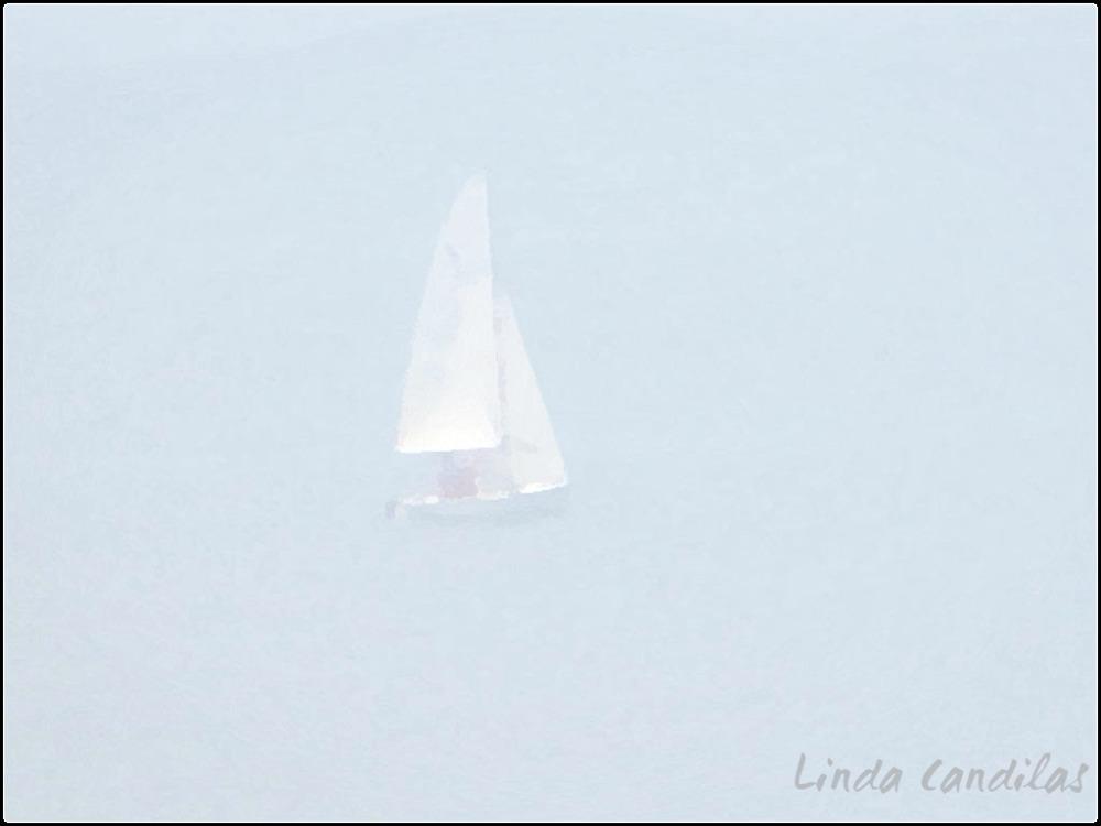 Hawaii Sailing in the Fog