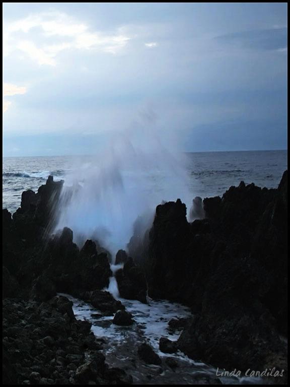Hawaii Rocky Caostline