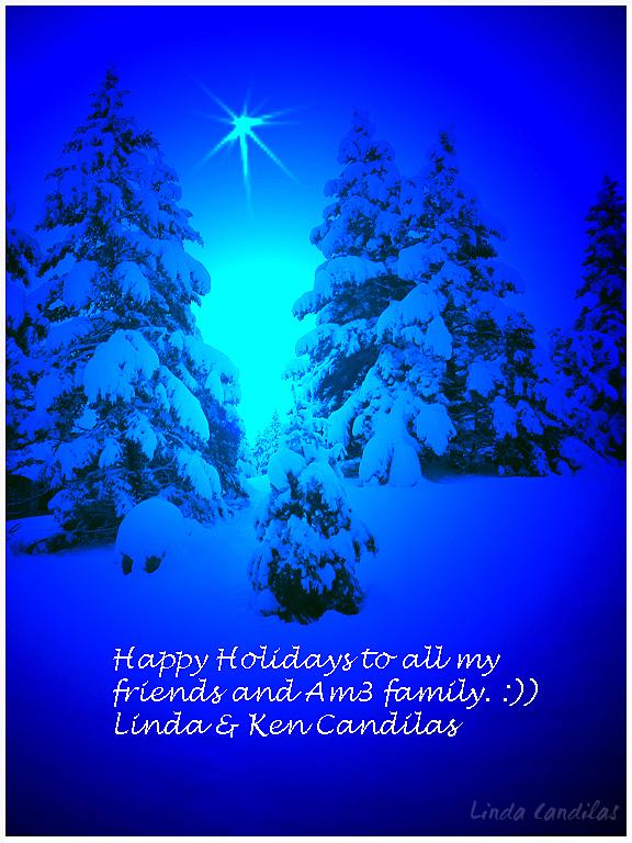 Montana Christmas Card