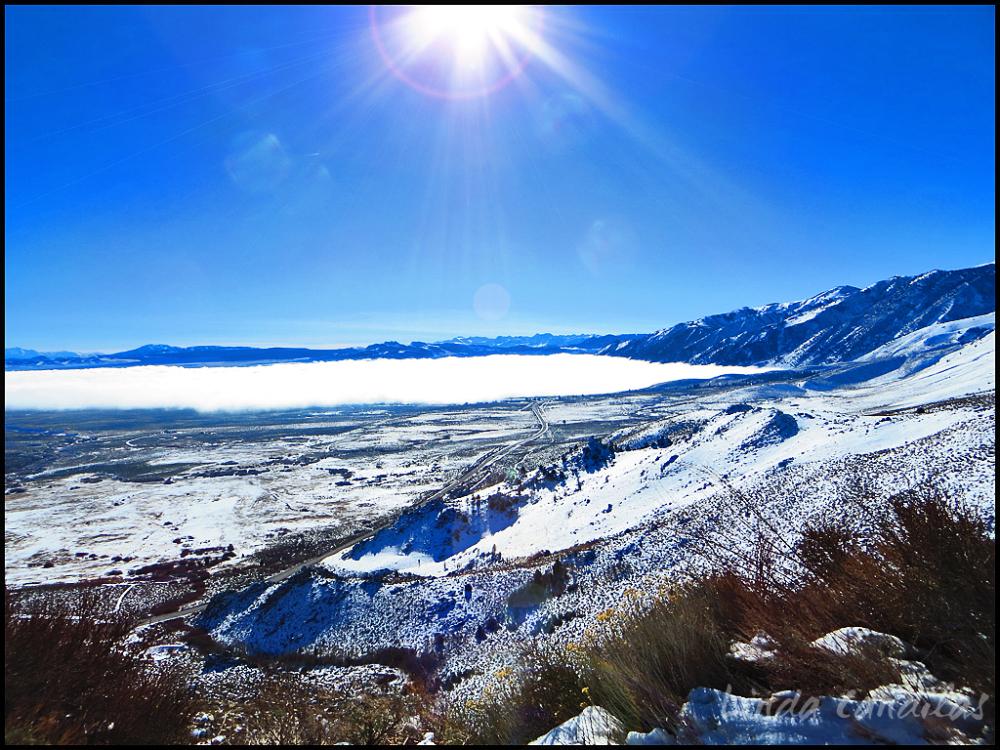 Fog Over Mono Lake