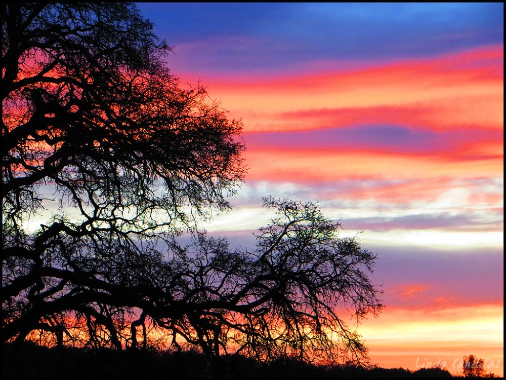 Sunset in Folsom Hills