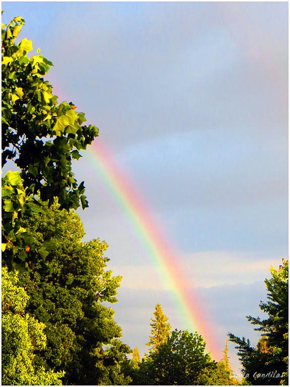 Rainbow after a short rain