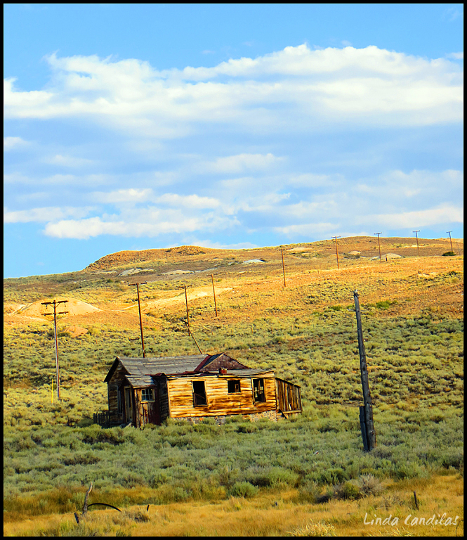 A Beautiful Day in Bodie