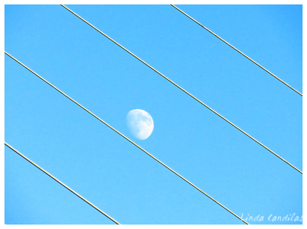 Sundial Bridge, Moon Rising