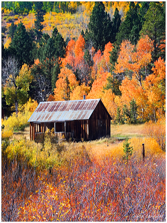 Hope Valley Cabin