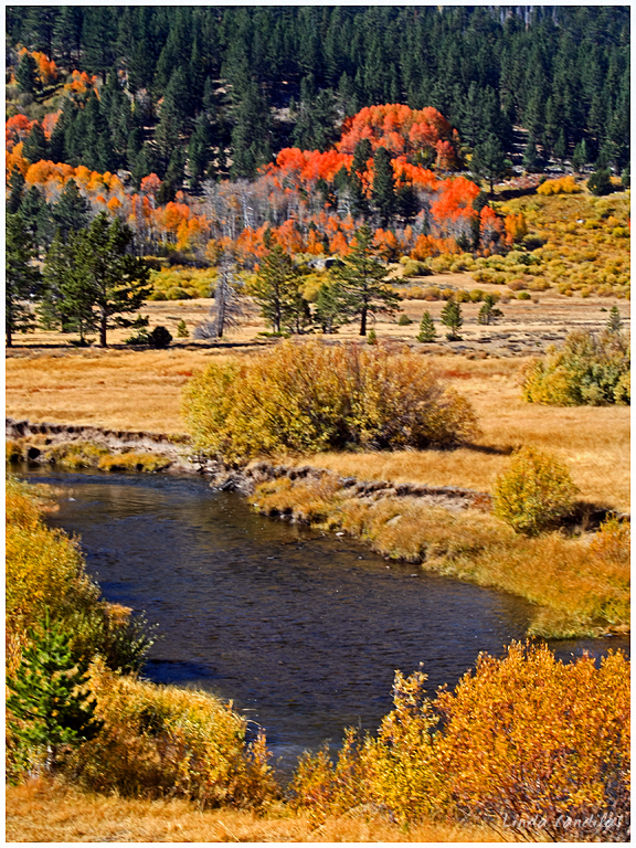 Autumn in Hope Valley