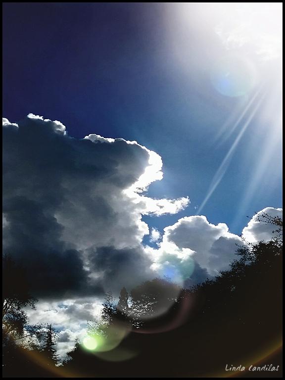 A Sunshine Day