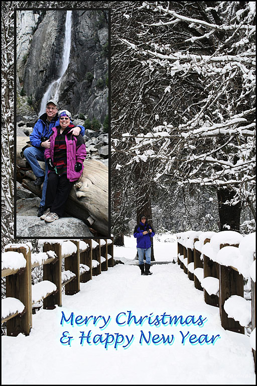 Merry Christmas Card 2016