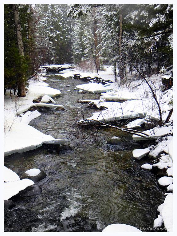 A Montana River