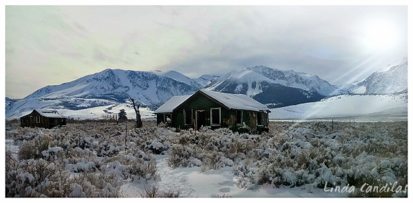 The Shack on HWY395