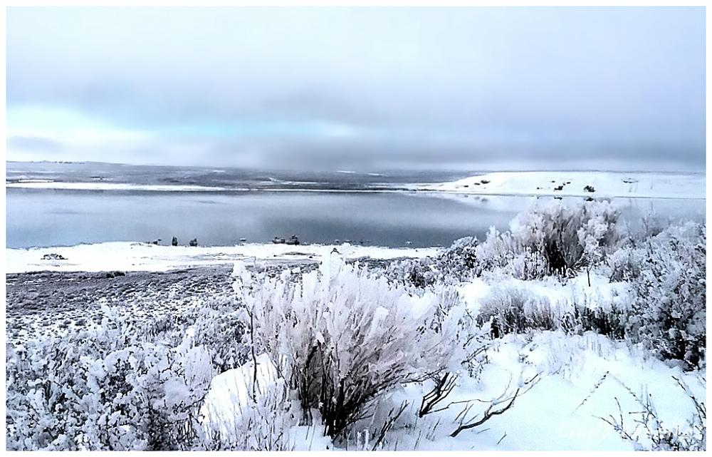 Mono Lake Winter Scene