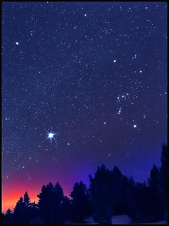 Montana Stars