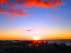 Sunset Pacific Grove Beach, Monterey 2018