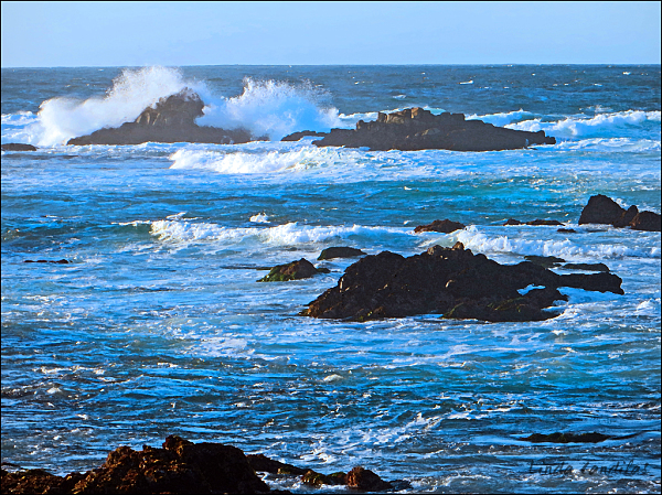 Pacific Grove Surf
