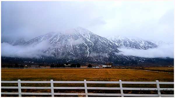Carson Valley, HWY 88