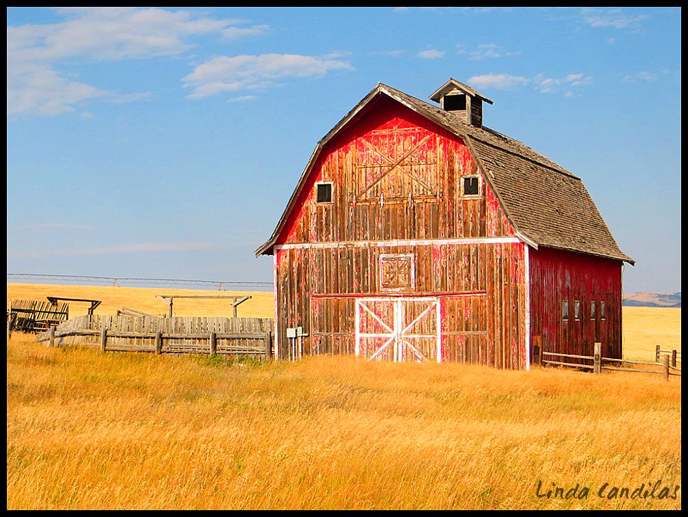 Red Barn, Montana