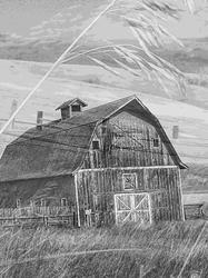Double Exposure of Barn