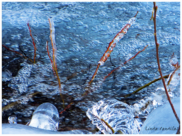 Frozen Ice Patterns Bishop Creek