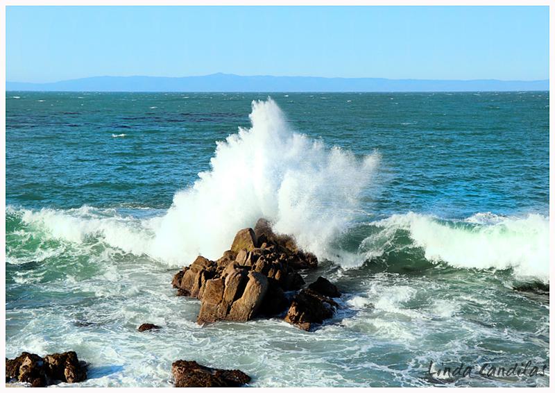 Monterey Coast Line