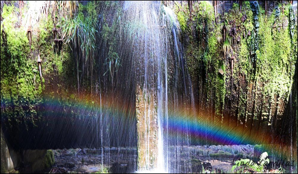Oregon Waterfall Trails