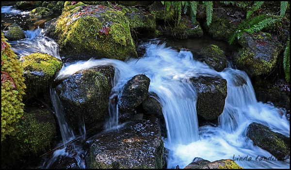 Watson Falls Creek