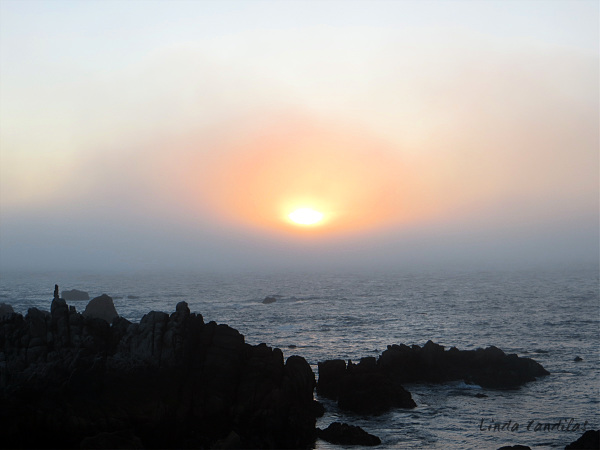 Sunsetting Pacific Grove