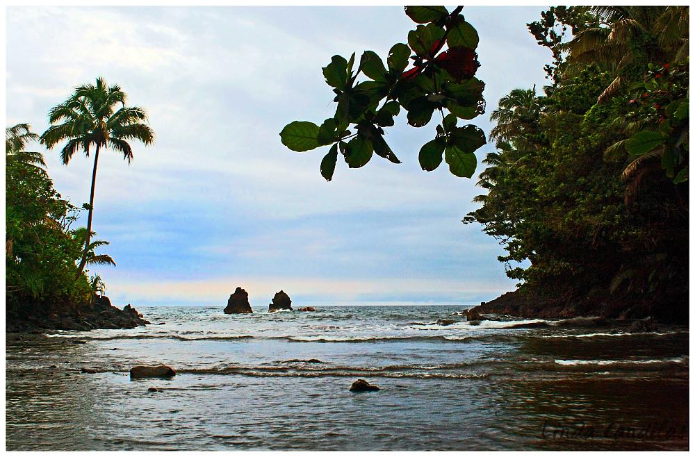Hawaii Ocean View