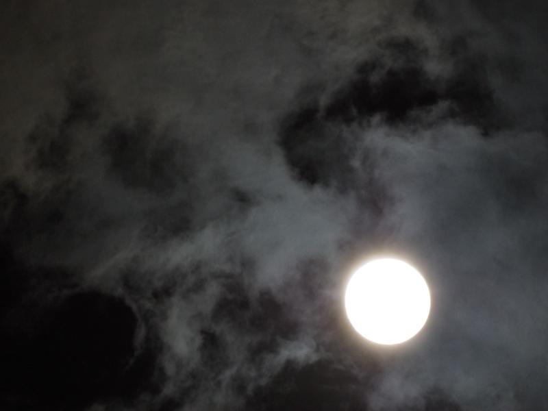 Moon,Torami