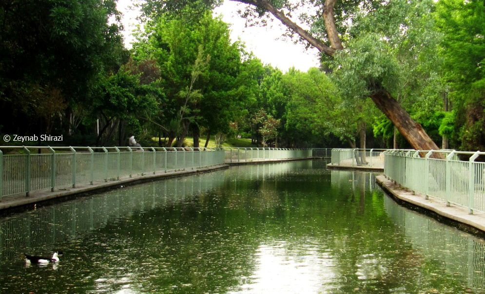 mashad, green, lake, mellat park