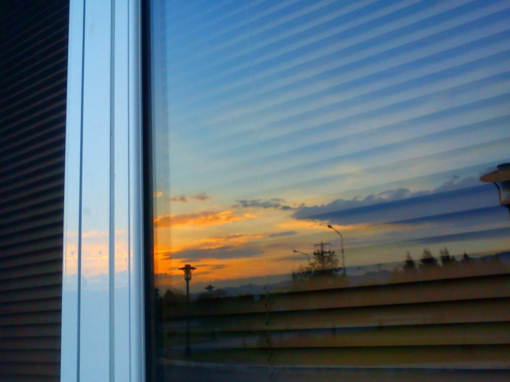 reflection, window