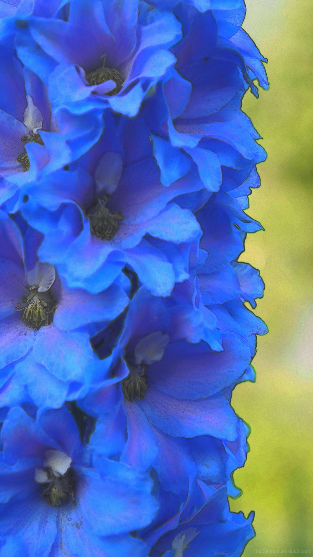 Bleu céruléum