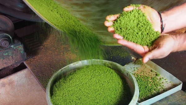 Tea Factory (2)