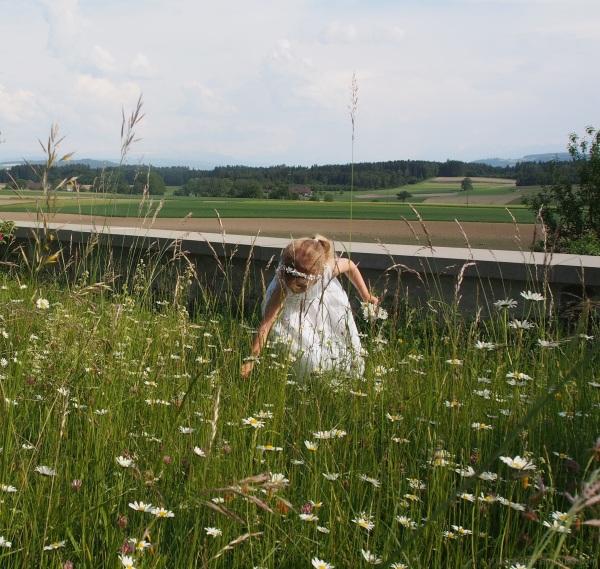 J'ai vu, cueillant des fleurs, une enfant joyeuse