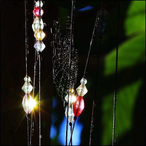 Le côté bling bling des araignées