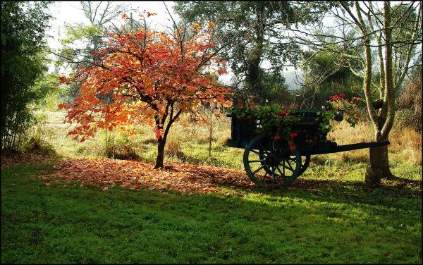 Une envie d'automne... déjà