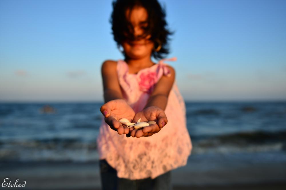 Sea Shells..