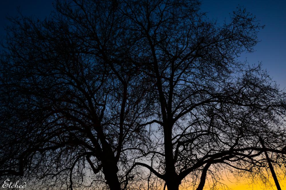 As the sun sets..