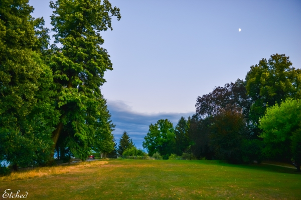 Reiter Park at Zurich