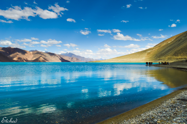 The Pristine waters of Pangong Tso