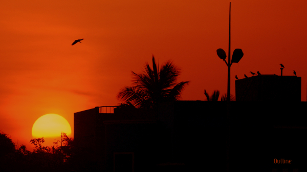 The Elliots Sunset