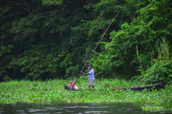 Fisherman at Vembanad Lake