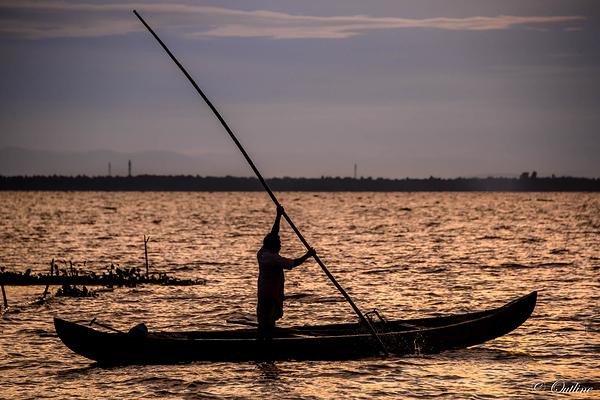 fishing at Vembanad