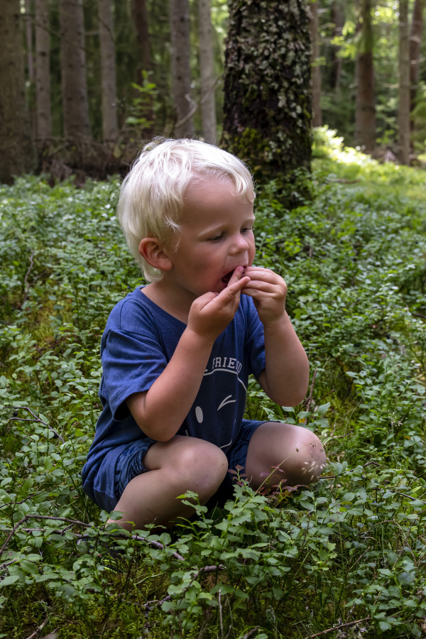 Little boy in the forest
